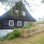 Dřevěný plot v3